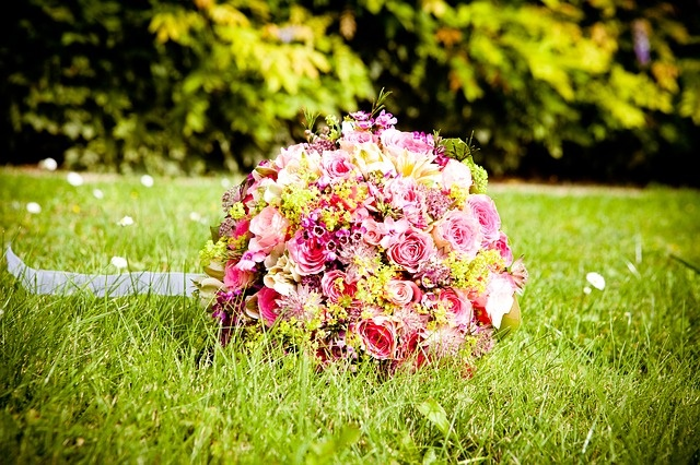 flowers-40